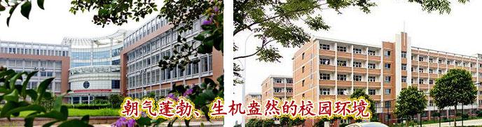 山东化工技师学院